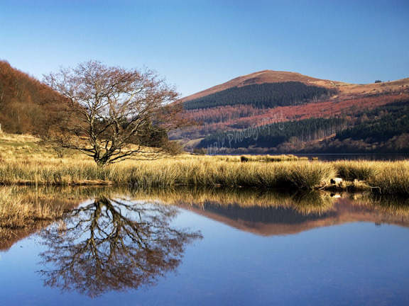 Tor y Foel Reflection.