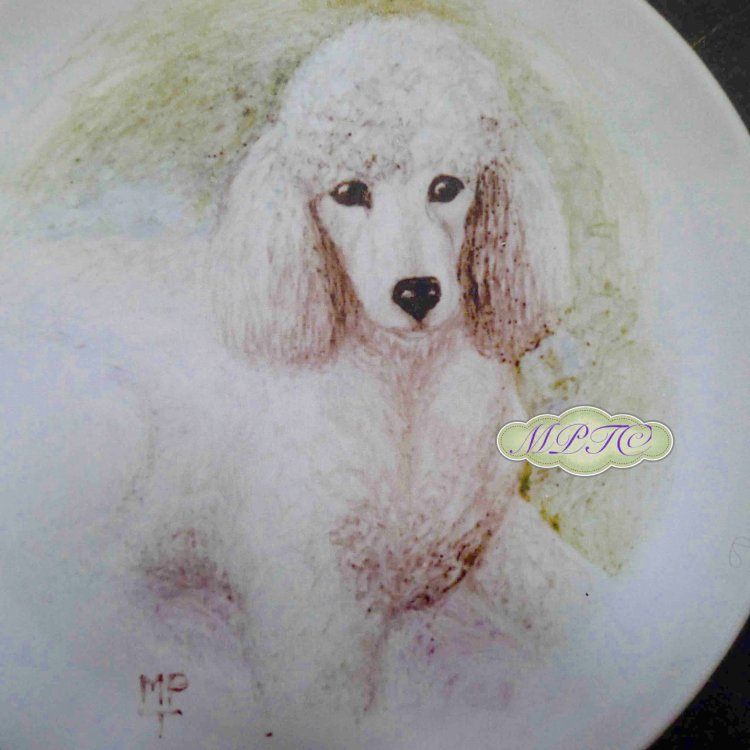 Hand Painted Dogs onto Fine Bone China Plates