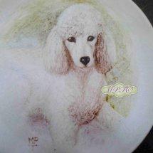 Hand Painted Dogs onto Fine Bone China Plates
