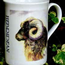Printed Mug of a Hebridean Ram