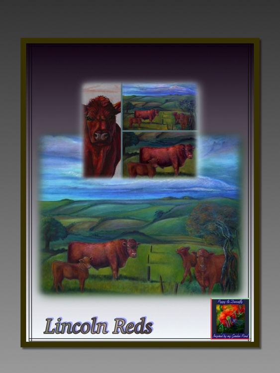 Lincoln Red Cattle in Landscape