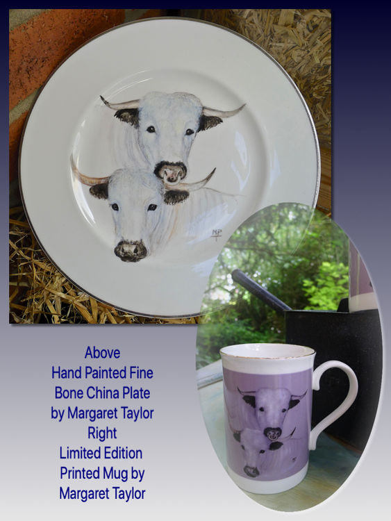 Hand Painted 'White Park' Plate. Limited Edition Printed Mug