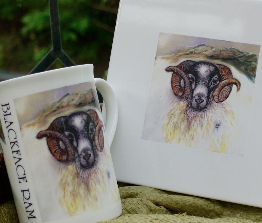 Limited Edition Blackface Printed Sheep Tiles £14.99 Each.
