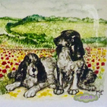 A Portrait of your Animals onto a 6inch Tile