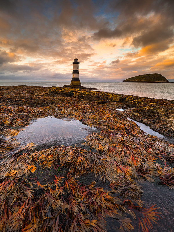 Penmon Lighthouse Dusk