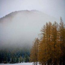 Austria-Dec2007-1-15