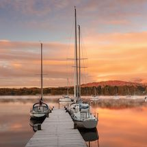 Misty Dawn Waterhead I