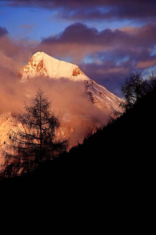 Mountain-Tree-At-Dusk-Austria