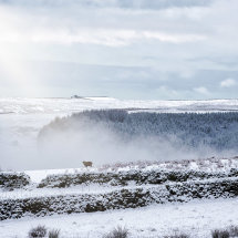 Winter on Hathersage Moor II