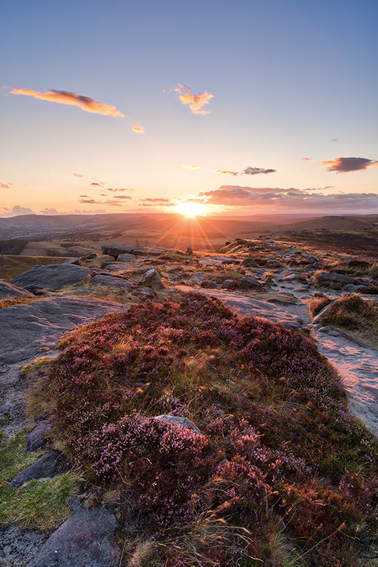 Stanage Heather Sunset