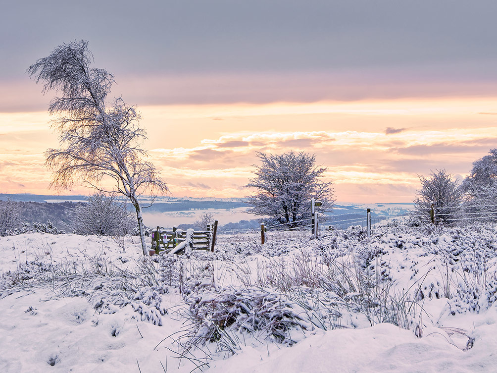 Surprise View Winter