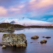 Rannoch Moor Winter III