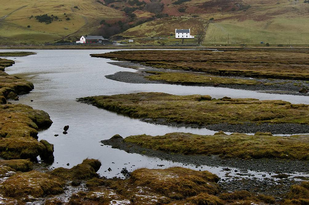 Loch Harport Marshes