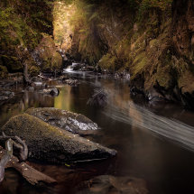 Autumnal Fairy Glen