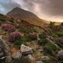 Golden Light on Tryfan