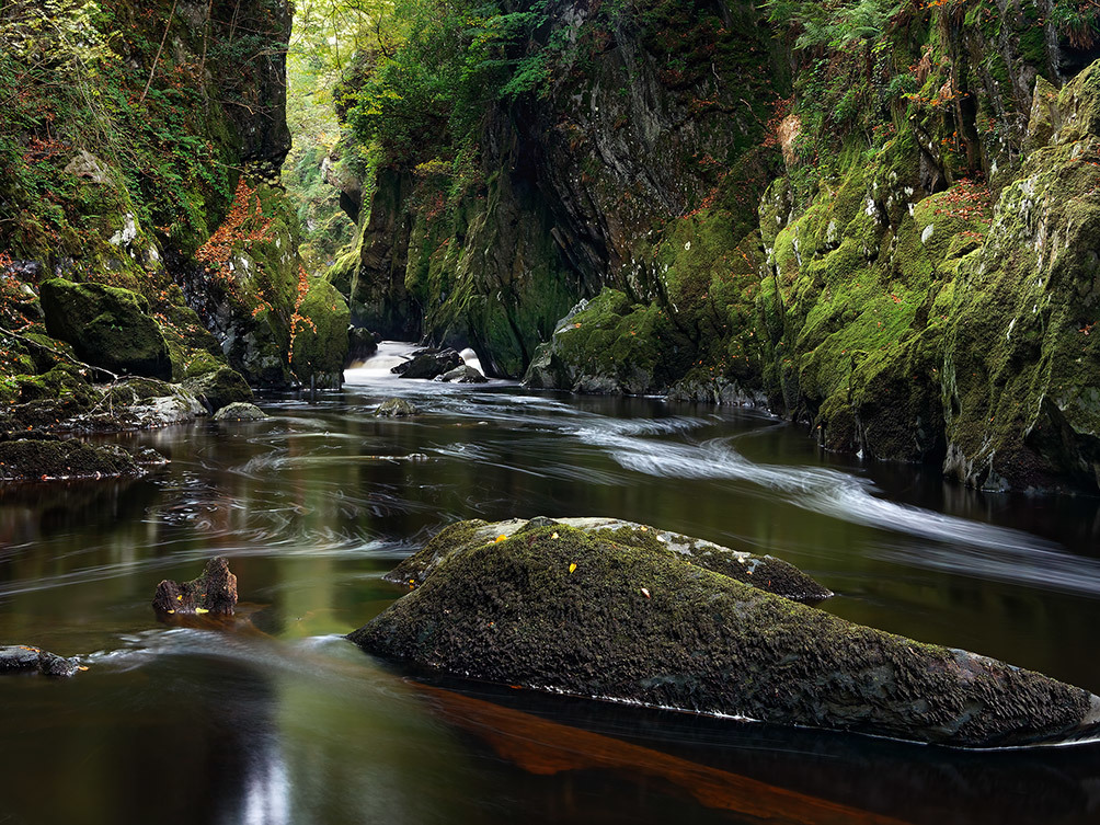 Mystical Fairy Glen II