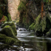 Mystical Fairy Glen