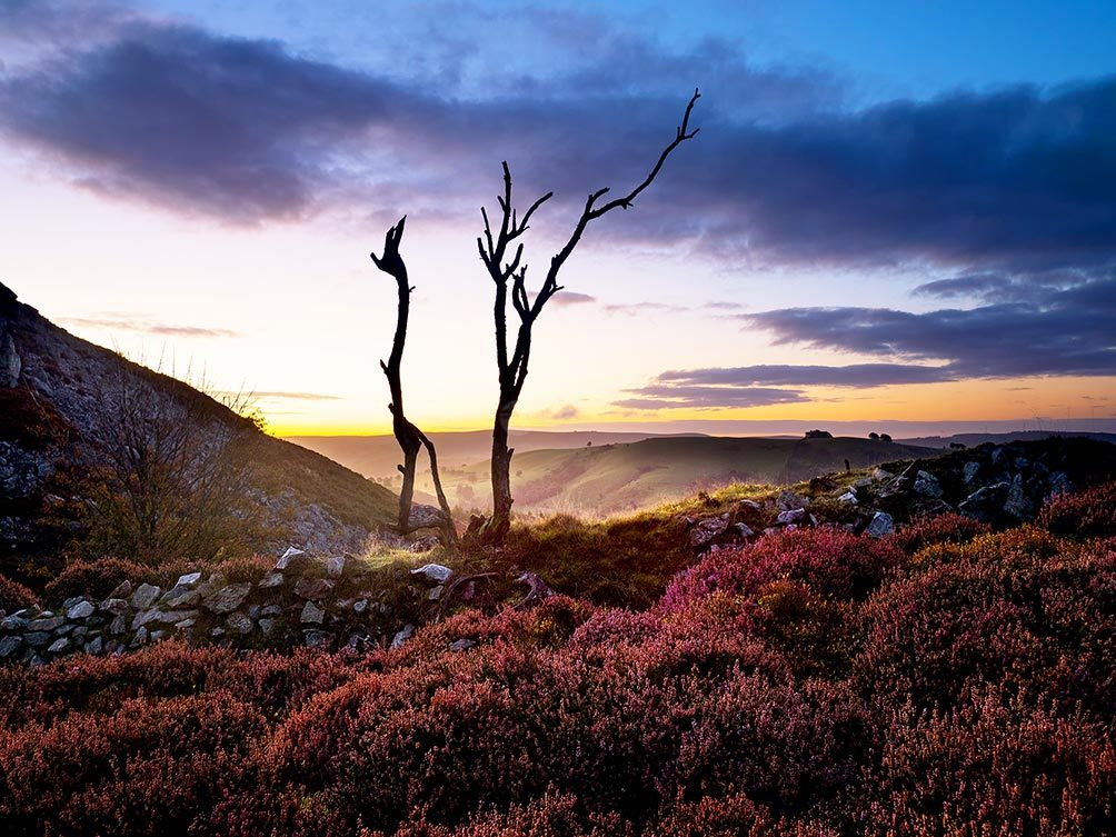 Sunrise on Stiperstones