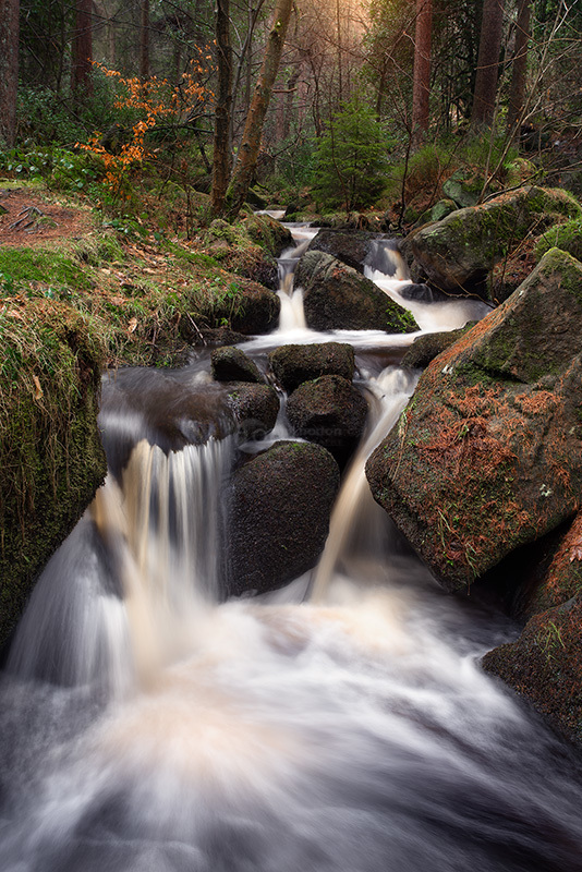 Wyming Brook III
