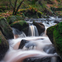 Wyming Brook IV