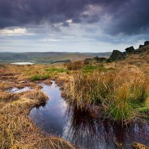 The Brook-Castleshaw Moor