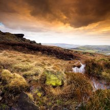 The Brook-Castleshaw Moor II
