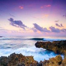 Purple Dusk III