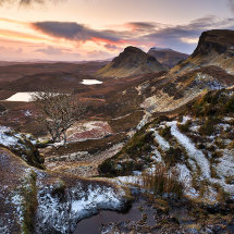 Quiraing Lone Tree Winter II
