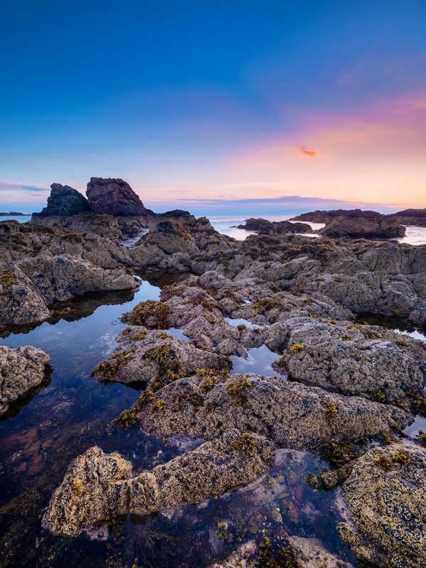 St Abbs Bay Dawn