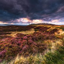 Autumn Heather-Stanage Edge
