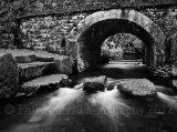 Stepping Stone Bridge 3159