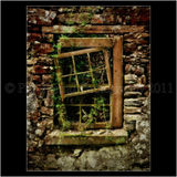 Derelict, Donegal 0013