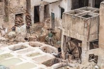 Fes Tannery 3