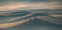 2nd= ,Anthony Le Conte Open, Morning Mist