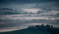 Anthony Le Conte Annual PDI Tuscany Mist
