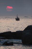 Brian Johnson ,Open Print, Catching The Sun
