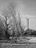Brian Johnson , Odd One Out, Tower And Trees