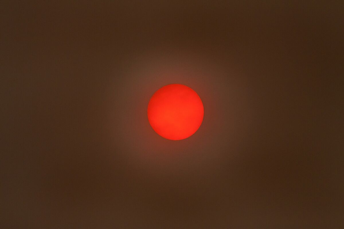 David Le Prevost LRPS,Red-any shade, Sun In Sandstorm