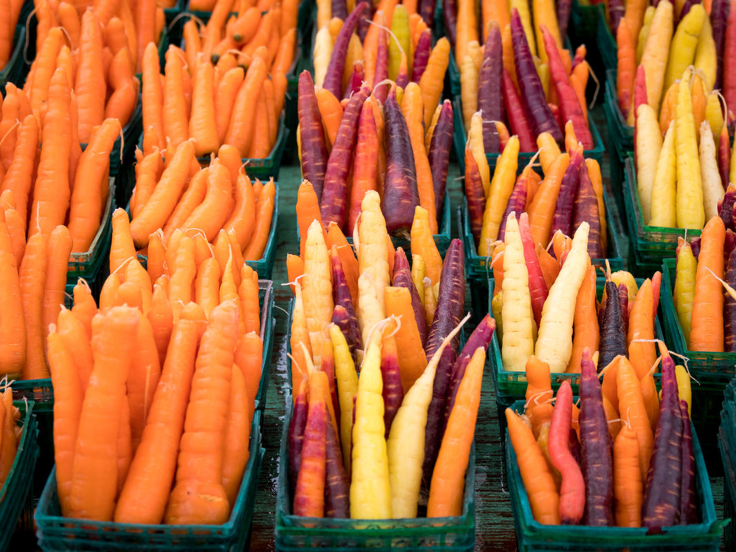Derek Bridel AFIAP, BPE2, Colour, Carrots