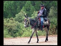 Derek Tostevin DPAGB, BPE1 Open Mountain Transport