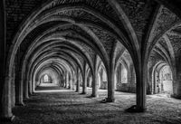 Honours MO Anthony Le Conte Fountains Abbey