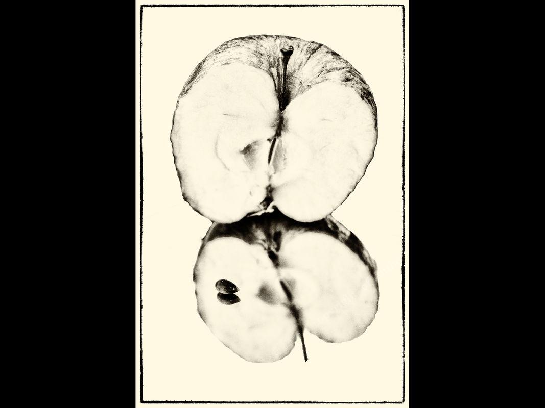 Jo Mahy Still Life Apple reflection