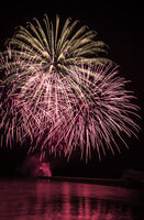 Joanne Mahy ,Smoke Fire, Red Firework