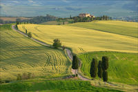 Merit CO Anthony Le Conte Val D Orcia