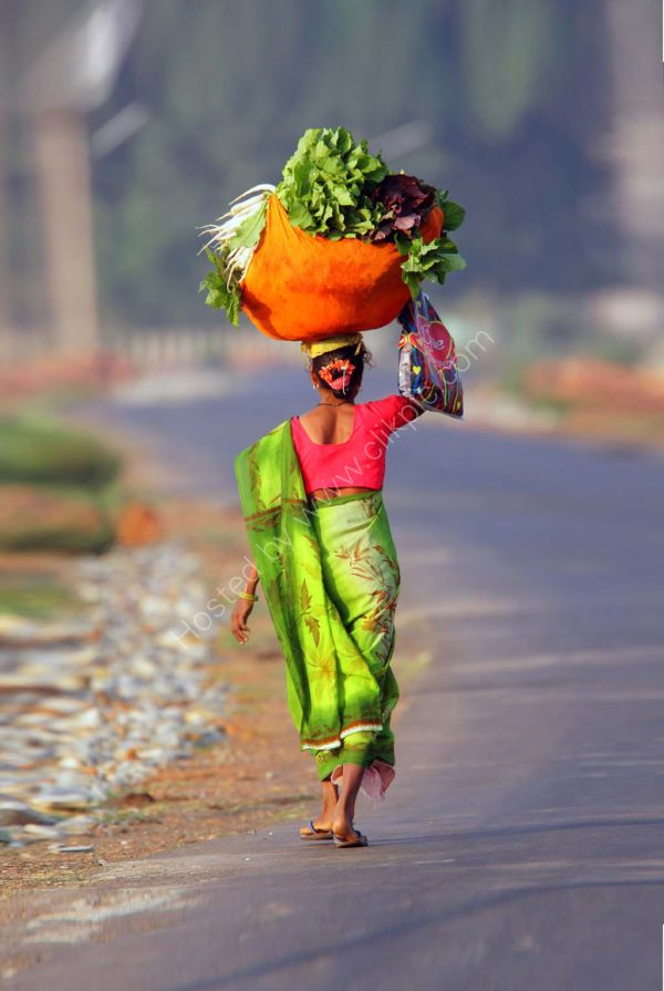 Going to market. Limited Edition canvas print.