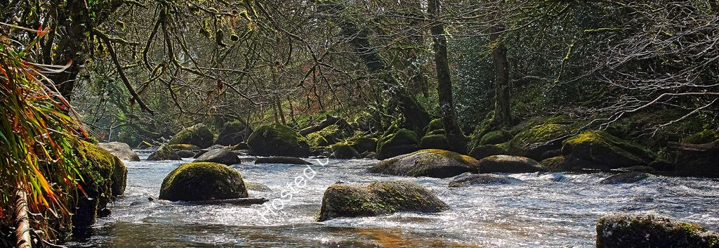 """The River Dart at Dartsmeet"""