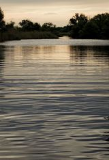 """Evening light in the Danube Delta"" Limited edition of 10 archival prints."