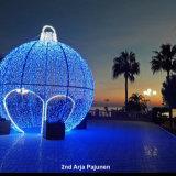 February 2020  Christmas Lights 2nd Arja Pajenun