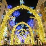 February 2020  Christmas Lights 2nd Eleanor Smith
