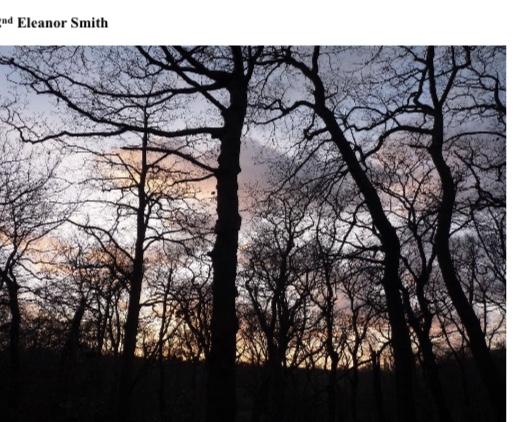 January 2021 Winter 2nd Eleanor Smith
